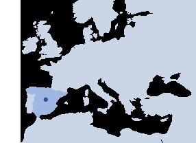 HIBLOW SPAIN S.L.
